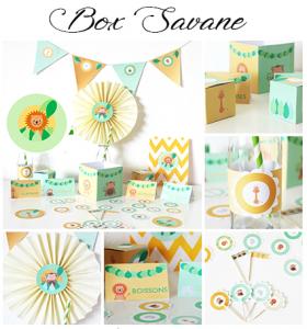 box-anniversaire-savane