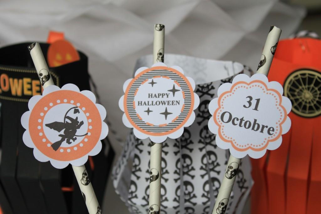 Halloween paille déco (4)