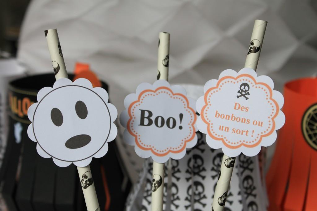 Halloween paille déco (7)