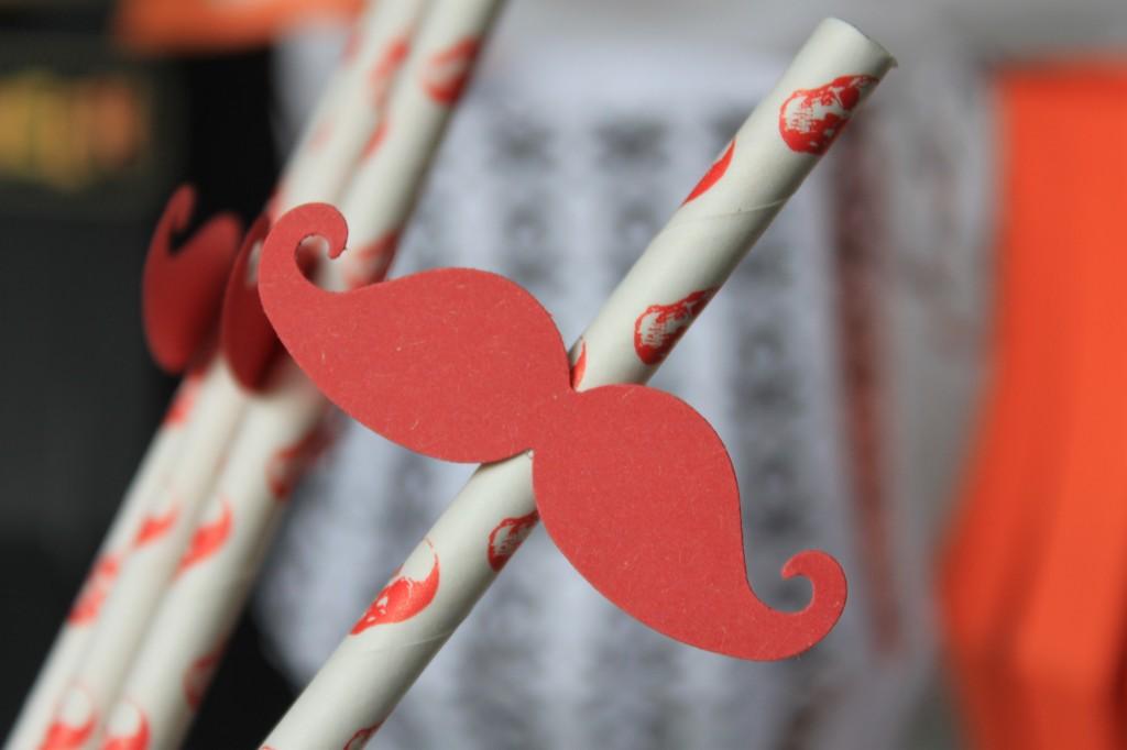 Halloween paille tete de mort moustache (5)