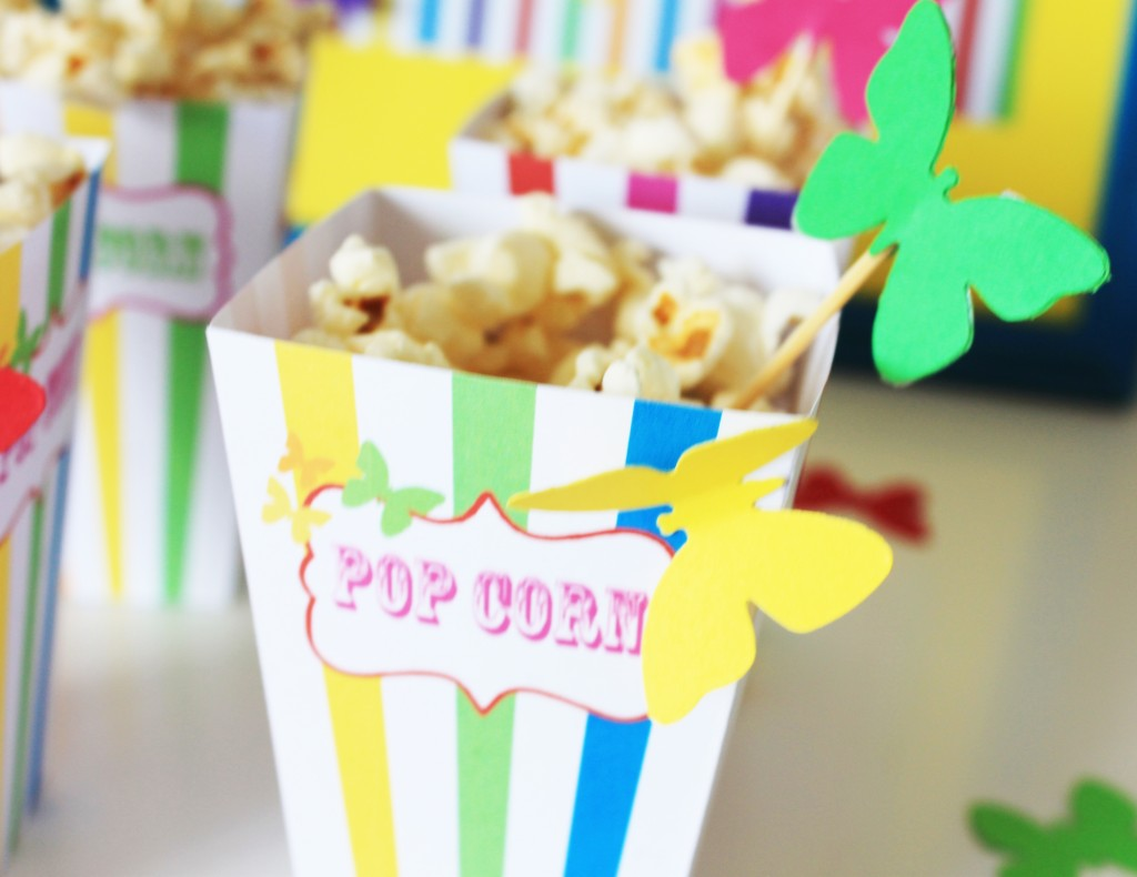 arc-en-ciel-pop-corn-box-butterfly