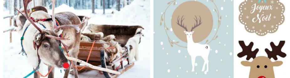 Rudolphe le renne au nez rouge : Carte de vœux et étiquettes cadeaux pour noël